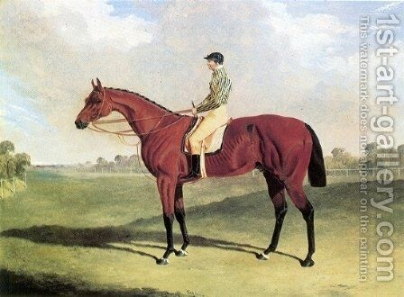 Bay Middleton With Jockey Up at Six Mile Bottom 1836 by John Frederick Herring Snr - Reproduction Oil Painting