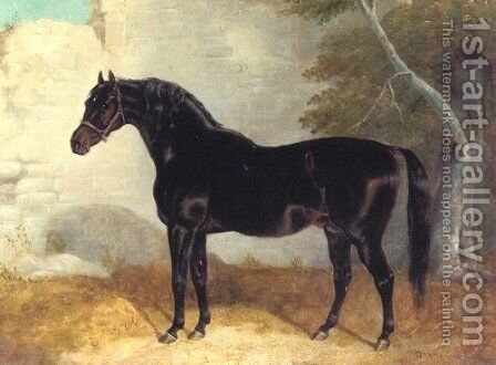 Dark Bay Racehorse in Courtyard by John Frederick Herring Snr - Reproduction Oil Painting