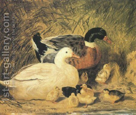Ducks And Ducklings 2 by John Frederick Herring Snr - Reproduction Oil Painting