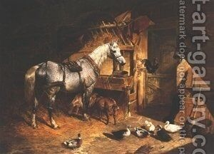 Grey In A Stable With Ducks and Goats by John Frederick Herring Snr - Reproduction Oil Painting