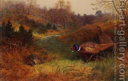 Autumn Sunshine by Archibald Thorburn - Reproduction Oil Painting