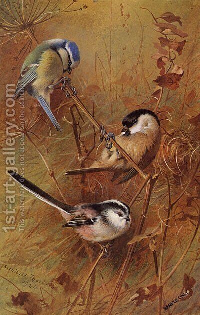 Autumn by Archibald Thorburn - Reproduction Oil Painting