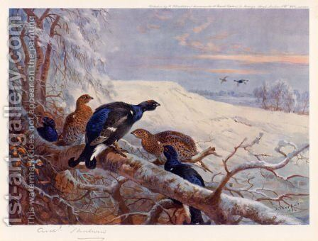 Blackgame in Winter 2 by Archibald Thorburn - Reproduction Oil Painting