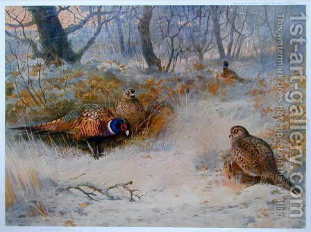 Frost in the Coverts by Archibald Thorburn - Reproduction Oil Painting