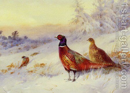 Frosty Sunrise by Archibald Thorburn - Reproduction Oil Painting