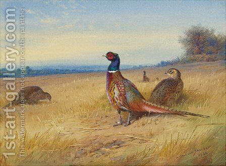 Keeping Watch by Archibald Thorburn - Reproduction Oil Painting