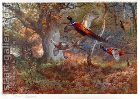 Pheasants Through the Oak Wood by Archibald Thorburn - Reproduction Oil Painting