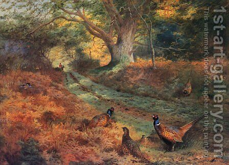 The Bridle Path by Archibald Thorburn - Reproduction Oil Painting