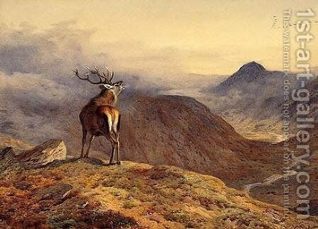 Voices of the Forest by Archibald Thorburn - Reproduction Oil Painting