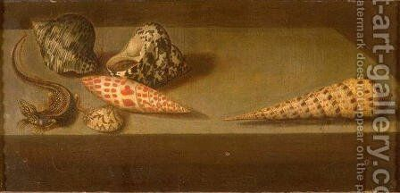 Lizards and shellfish by Balthasar Van Der Ast - Reproduction Oil Painting