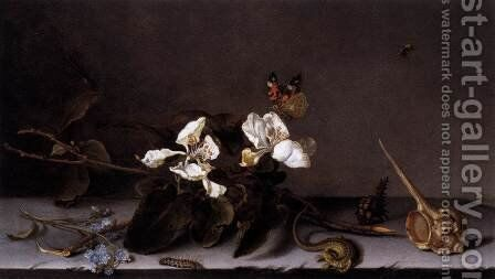 Still-Life with Apple Blossoms by Balthasar Van Der Ast - Reproduction Oil Painting