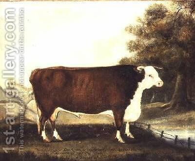 Prize Bull 10 Years Old Named Sovereign Bred by Mr Hewer of Hardwick Salop by J. Miles - Reproduction Oil Painting