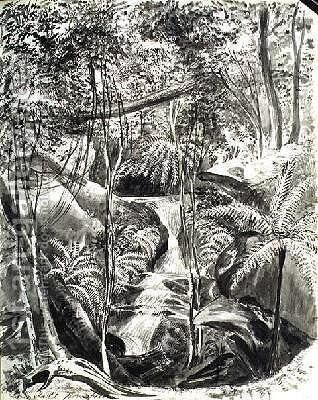Jungle Study by Caroline Louisa Meredith - Reproduction Oil Painting