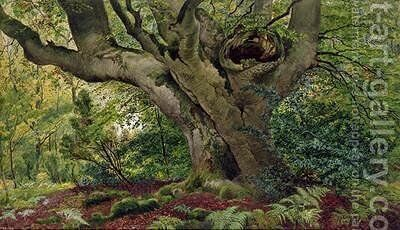 Burnham Beeches by James Matthews - Reproduction Oil Painting