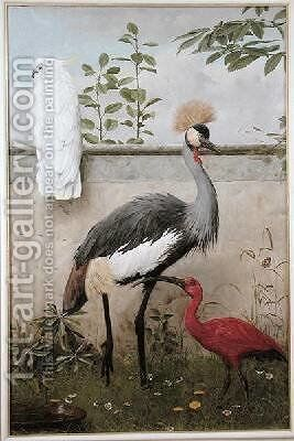 Cockatoo Crested Crane and Scarlet Ibis by Henry Stacy Marks - Reproduction Oil Painting