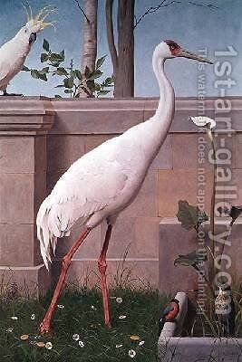 Indian Crane Cockatoo Bullfinch and Thrush by Henry Stacy Marks - Reproduction Oil Painting