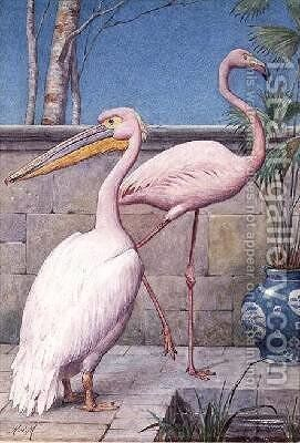 Pelican and Flamingo by Henry Stacy Marks - Reproduction Oil Painting