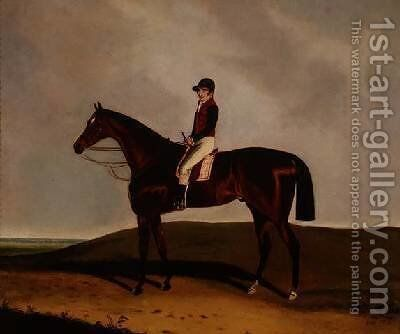 A Bay Racehorse 1851 by C. Markham - Reproduction Oil Painting