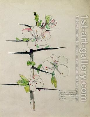 Blackthorn Chiddingstone Kent 1910 by Charles Rennie Mackintosh - Reproduction Oil Painting