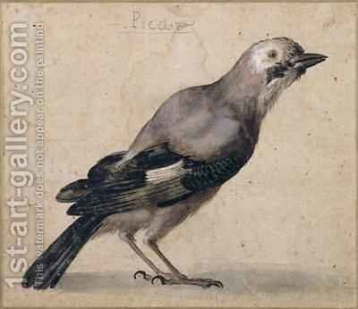 A Jay by Benedetto Luti - Reproduction Oil Painting