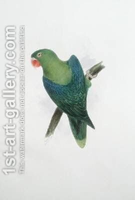 Green Parrot by Edward Lear - Reproduction Oil Painting