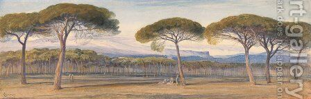 A View of the Pine Woods Above Cannes by Edward Lear - Reproduction Oil Painting