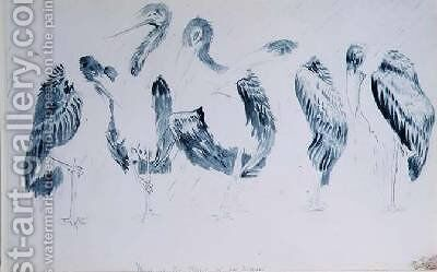Studies of Storks by Edward Lear - Reproduction Oil Painting