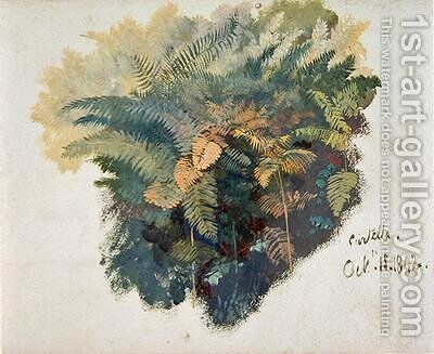 A Study of Ferns Citivella by Edward Lear - Reproduction Oil Painting
