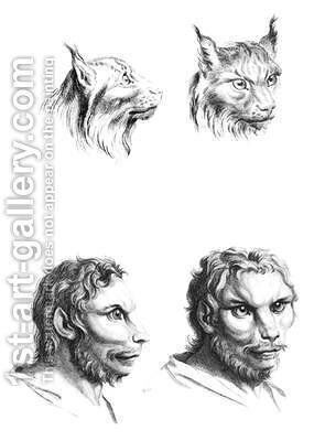 Similarities between the heads of a lynx and a man by (after) Le Brun, Charles - Reproduction Oil Painting