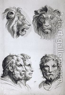 Similarities Between the Head of a Lion and a Man by (after) Le Brun, Charles - Reproduction Oil Painting