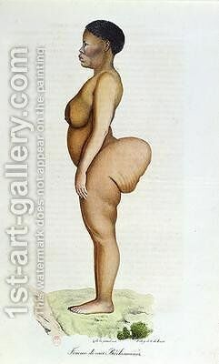 The Hottentot Venus Bushman woman by Carel Christian Anthony Last - Reproduction Oil Painting
