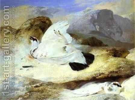 Ptarmigan by Sir Edwin Henry Landseer - Reproduction Oil Painting