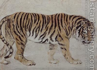 Tiger by Sir Edwin Henry Landseer - Reproduction Oil Painting