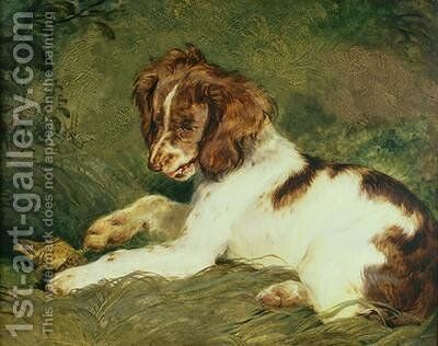 A Puppy teasing a Frog by Sir Edwin Henry Landseer - Reproduction Oil Painting