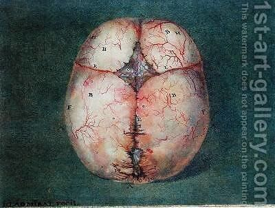 The Brain by Jan or Joannes Ladmiral - Reproduction Oil Painting