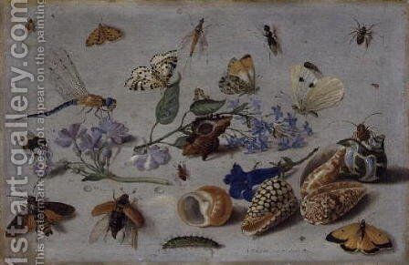 Butterflies and other Insects by Jan van Kessel - Reproduction Oil Painting