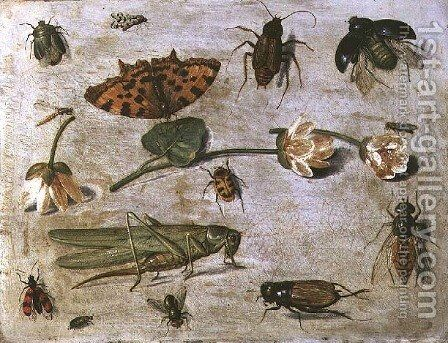 Insects 3 by Jan van Kessel - Reproduction Oil Painting