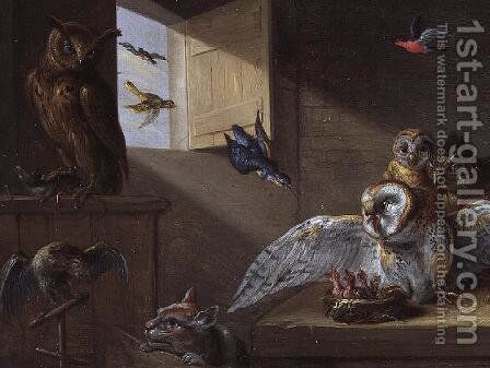 A Family of Owls other Birds and a Cat by Jan van Kessel - Reproduction Oil Painting