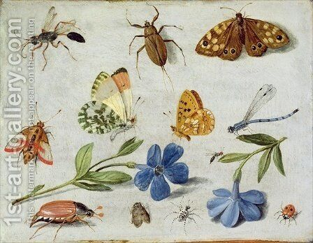Insects 6 by Jan van Kessel - Reproduction Oil Painting