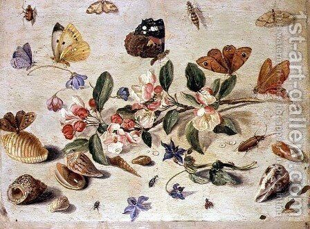 A Study of Flowers and Insects by Jan van Kessel - Reproduction Oil Painting
