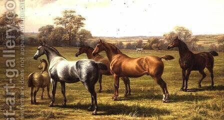 Horses and Foal in a Field by Charles Jones - Reproduction Oil Painting