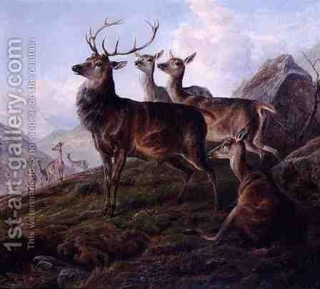 Red Deer in a Highland Landscape by Charles Jones - Reproduction Oil Painting