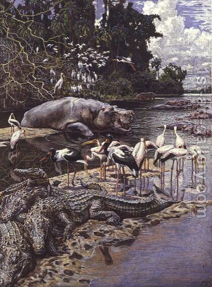 Swamp Animals and Birds on the River Gambia by Harry Hamilton Johnston - Reproduction Oil Painting