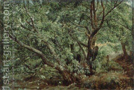 Trees by a Stream by Alexander Ivanov - Reproduction Oil Painting