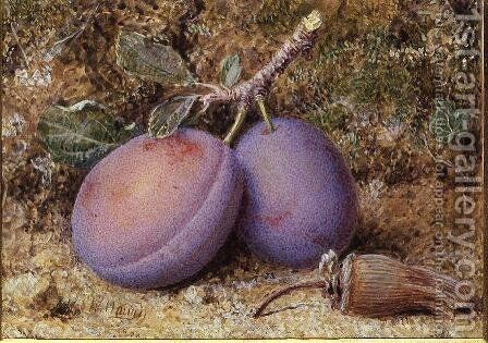 Plums and a cob nut by William B. Hough - Reproduction Oil Painting