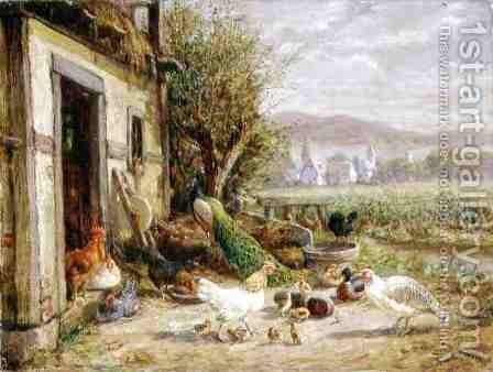 Chickens Ducks and a Peacock by a Canal by Anton Hoffmann - Reproduction Oil Painting