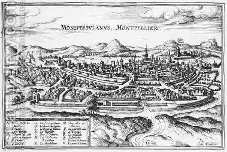 Map of Montpellier from Civitates Orbis Terrarum by (after) Hoefnagel, Joris - Reproduction Oil Painting