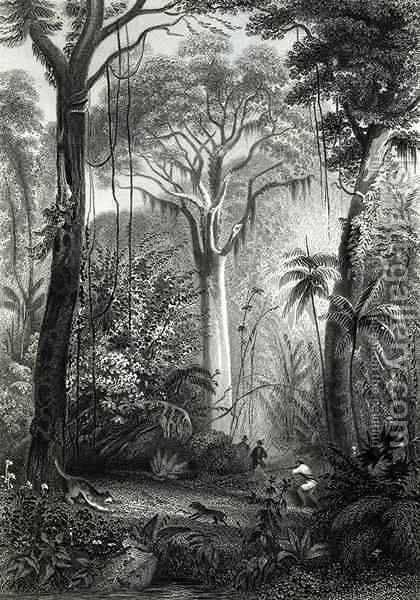 Scene in a Brazilian Forest by Henry George Hine - Reproduction Oil Painting