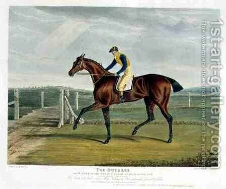The Duchess the Winner of the Great St Leger at Doncaster by (after) Herring Snr, John Frederick - Reproduction Oil Painting