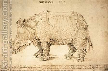 Rhinoceros 2 by Albrecht Durer - Reproduction Oil Painting